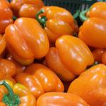 Купить семена перцев