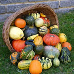 Купить семена декоративных овощей