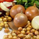 Купить семена лука