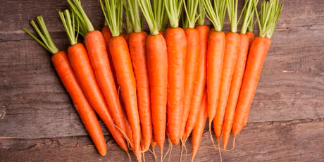 Купить семена моркови
