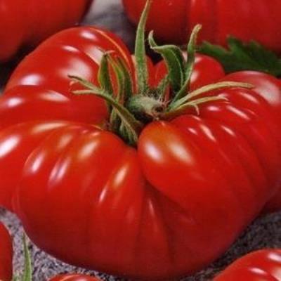 Королевский подарок томат 69