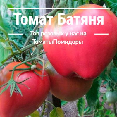 Томат Батяня - 3 место топ розовые томаты