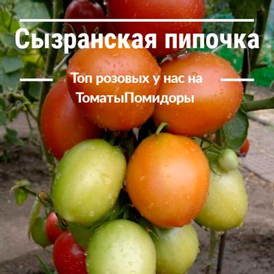 Томат Сызранская пипочка - 9 место топ розовые томаты