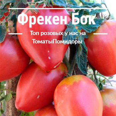 Томат Фрекен Бок - 7 место топ розовые томаты