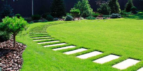 Купить семена газонной травы, удобрений для газона и сидератов