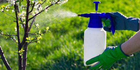 Купить средства от вредителей - инсектициды