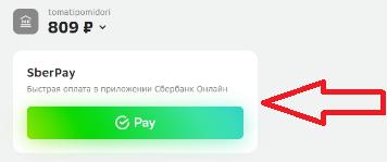 Оплата через приложение на телефоне Сбербанк Онлайн (не надо вводить номер карты)