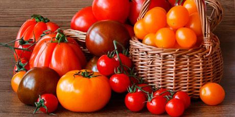 Купить семена томатов: коллекционные, минусинские, Партнер, Аэлита и другие