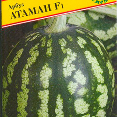 Купить Арбуз Атаман
