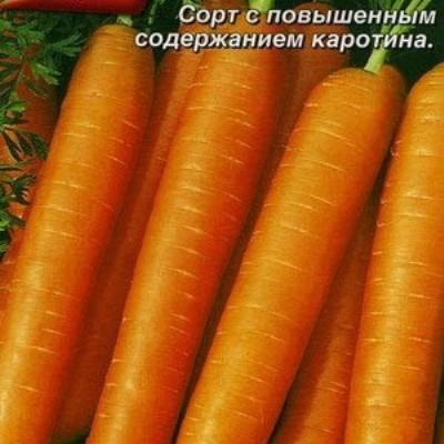 Купить Морковь Нантская 4 в пакетах