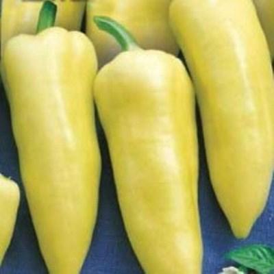 Купить Перец Венгерский желтый