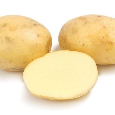 Купить Картофель Коломбо