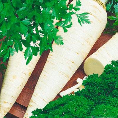Купить Петрушка Потешка смесь корневой, листовой, кудрявой