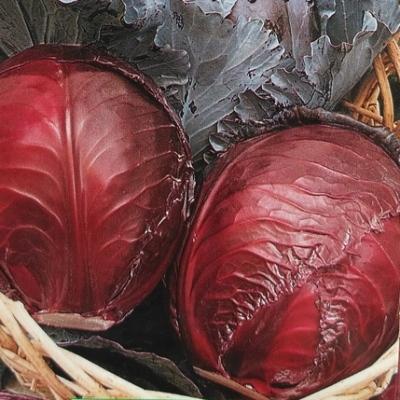 Купить капусту Фаберже