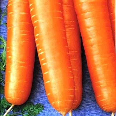 Купить Морковь Детская сладость на ленте