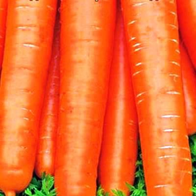 Купить Морковь Детская сладость в пакетах