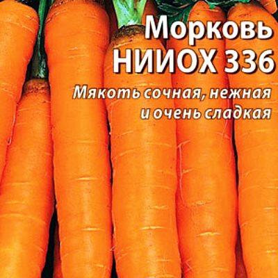 Купить Морковь НИИОХ 336 в пакетах