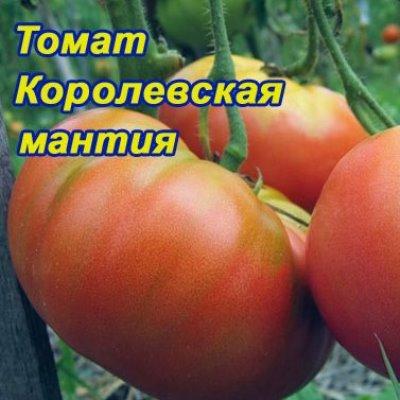 Томат Королевская мантия
