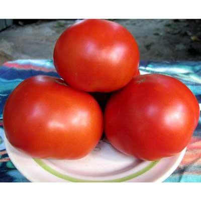 Купить томат Красным Красно