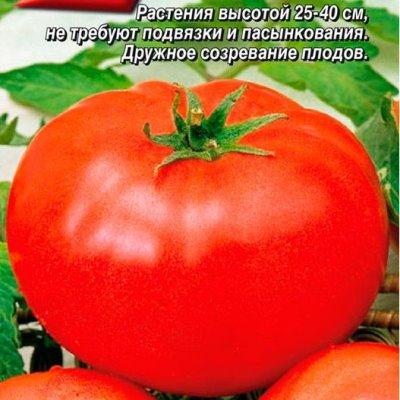 Купить Томат Волгоградский скороспелый