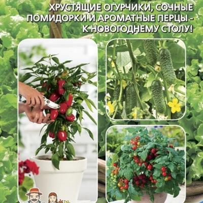 Набор Новогодний Урожай (огурец, перец, томат) 0.25 г