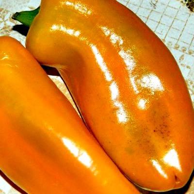 Купить Перец Оранжевая лакомка