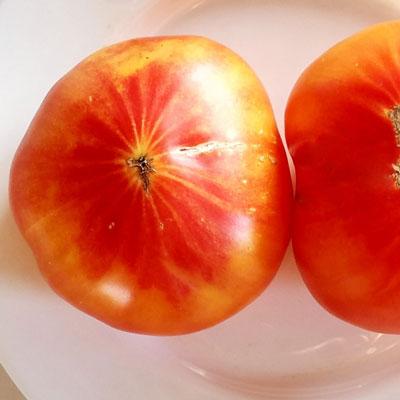 Купить томат Деревенский