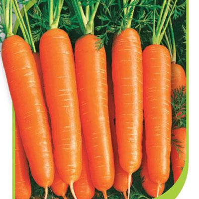 Купить Морковь Дордонь в пакетах
