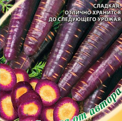 Купить Морковь Королева Фиолетовая