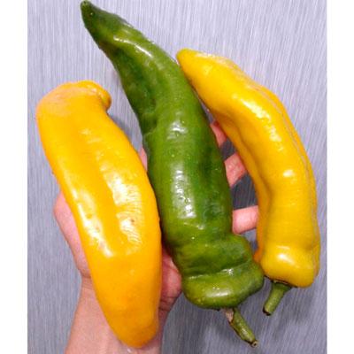 Купить Перец Рамиро желтый