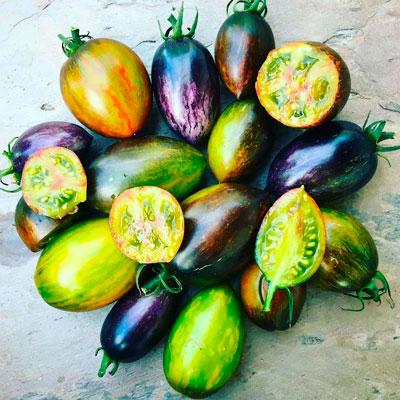 Купить томат Атомный виноград Бреда