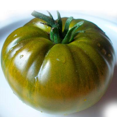 Купить томат Зеленая тайна личинки