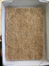 Купить Набор для выращивания микрозелени Редис Чайна Роуз