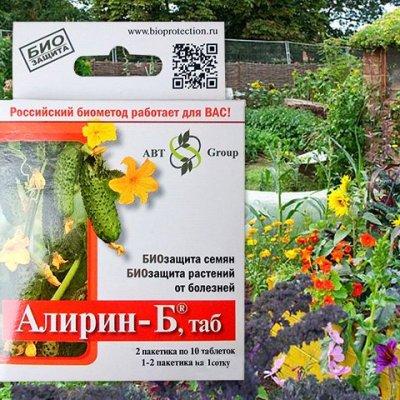 Купить семена Алирин Б 20 шт