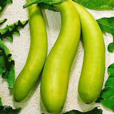 Купить Баклажан Зелененький