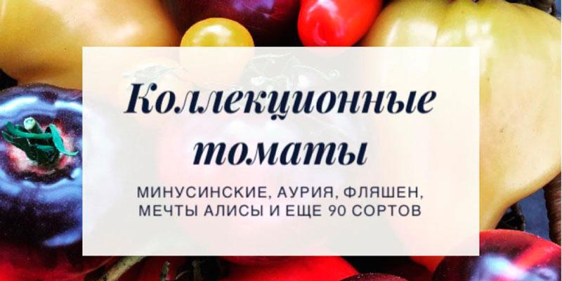 Купить коллекционные семена