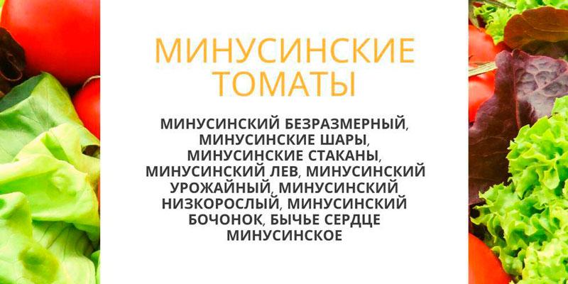 Купить минусинские томаты